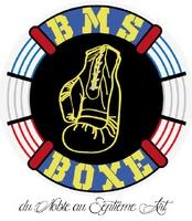les nouvelles stars de la boxe bms boxe anglaise